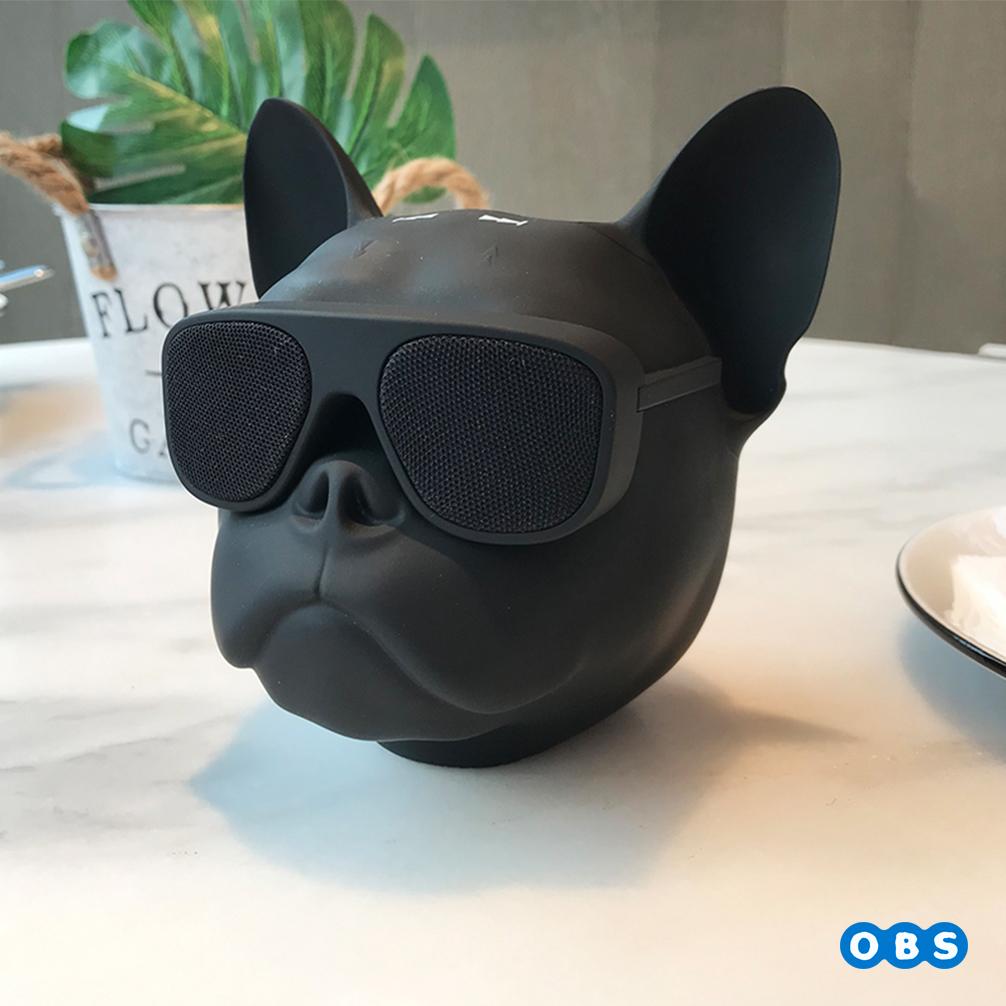 빅독 스피커,블루투스스피커, 빅불독 블루투스 스피커,BIG-DOG